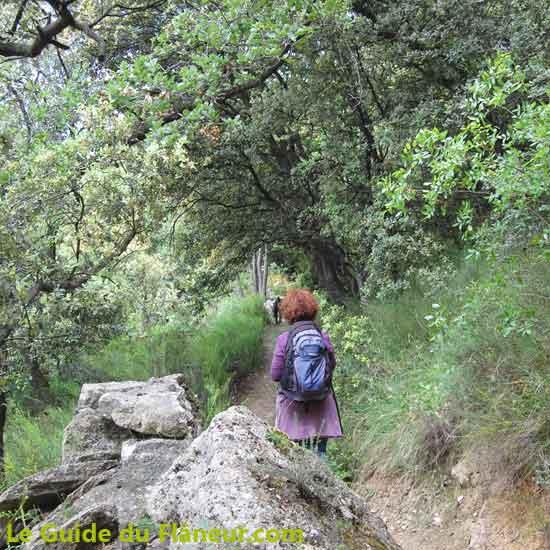 La randonnée à Malaucène