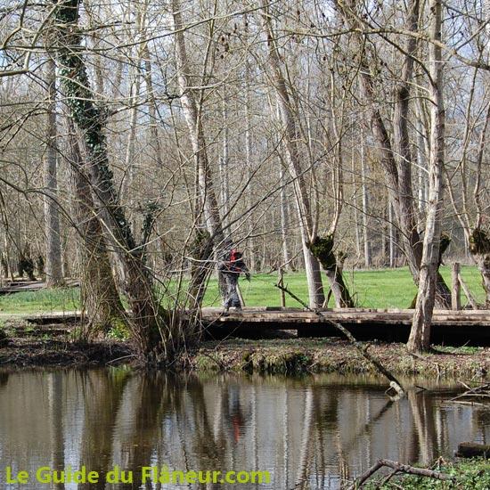 Randonnée dans le Marais Poitevin