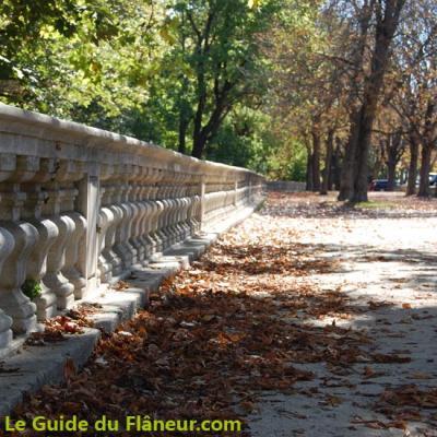 Promenade des marronniers