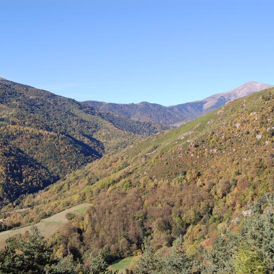 Paysage du Vallespir