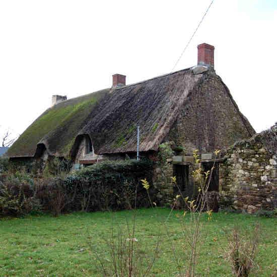 Une bourrine - la maison des marais