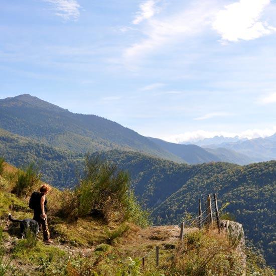 Chemins des Pyrénées