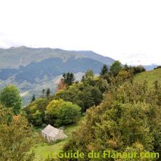 Courtaou campan pyrenees