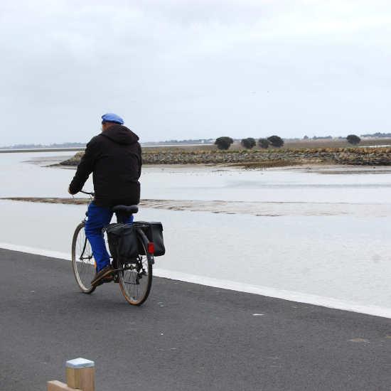 Un cycliste en Vendée