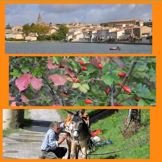 Idées de séjours - Flâneries entre Castelnaudary à Carcassonne