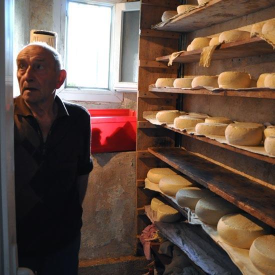 Fromages des Pyrénées