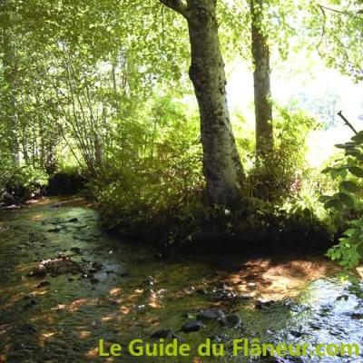 Lamontelarie ruisseau