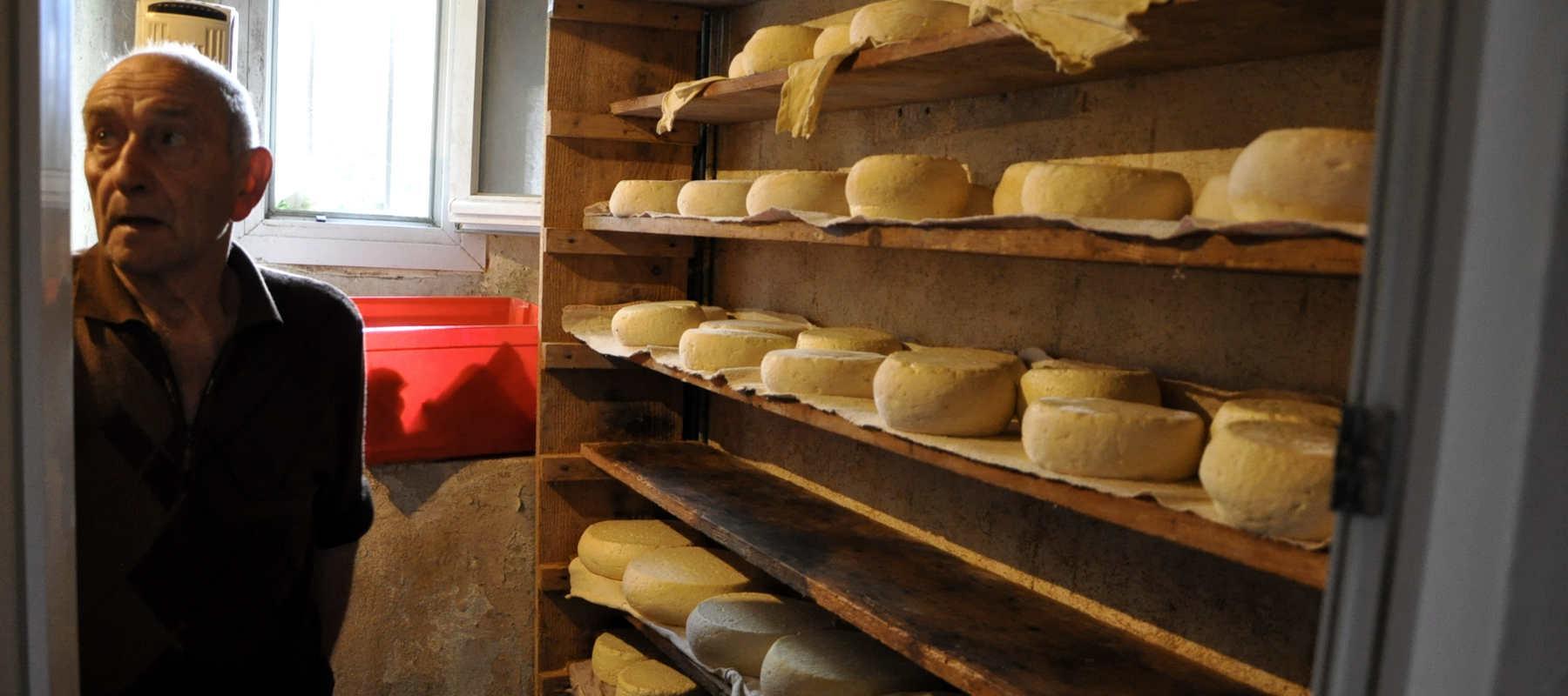 Louis dans sa fromagerie à Sost