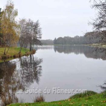 L'étang de Masselièvre