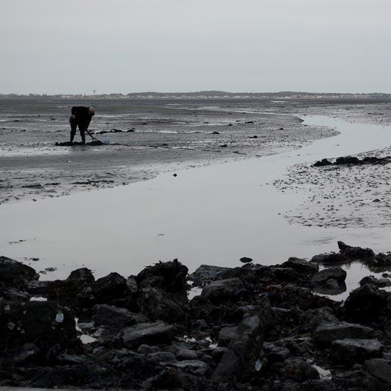 Pêcheur à pieds