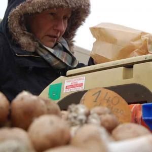 Producteur de champignons