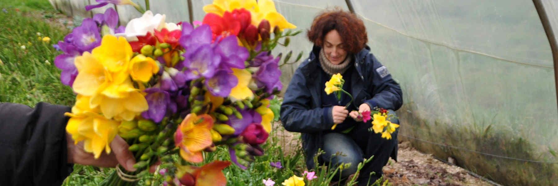 Producteur à Fleurs du temps à Séné