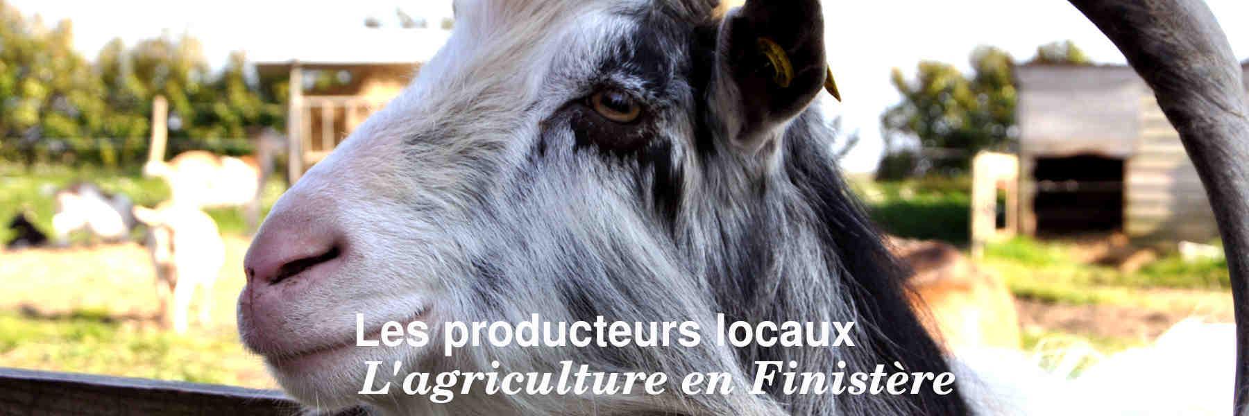 Les producteurs locaux du Finistère