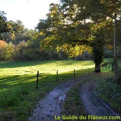 La randonnée d'Ayen en Corrèze