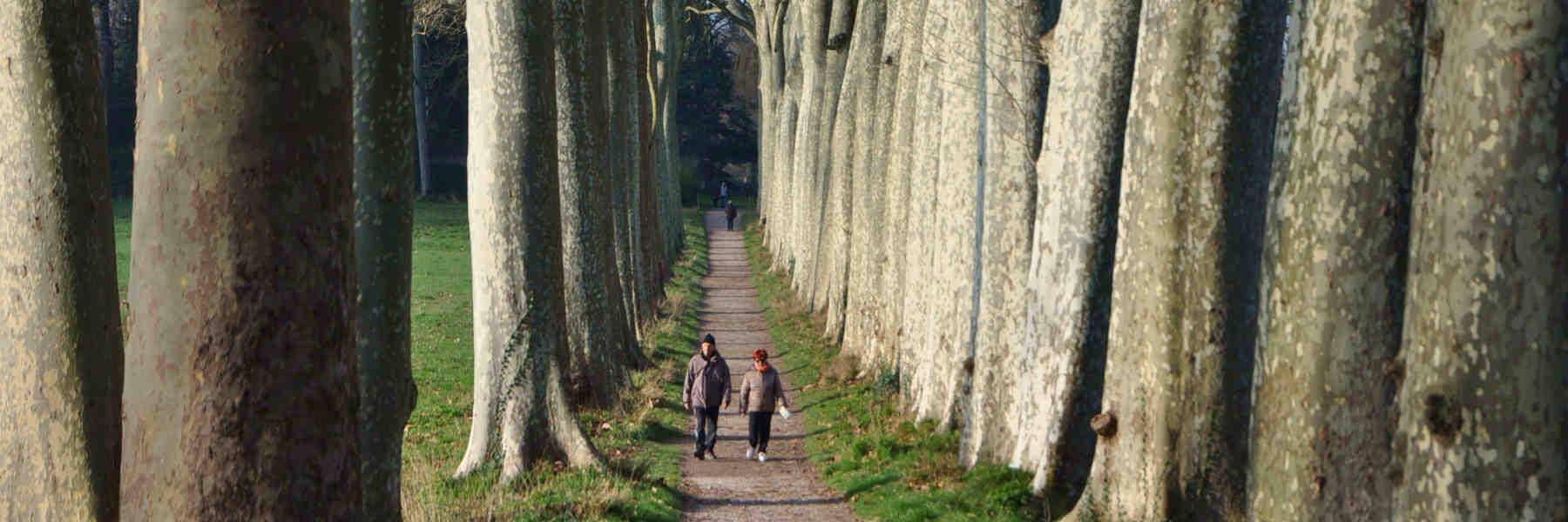La randonnée pédestre à Avignonet-Lauragais