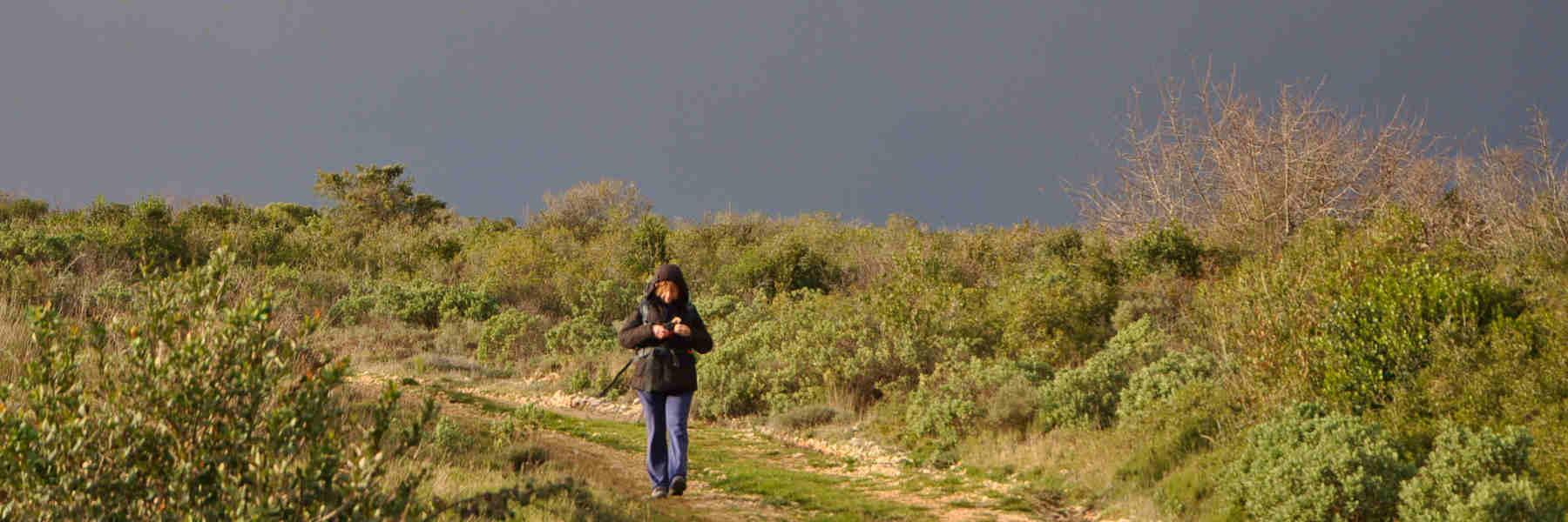 La randonnée pédestre à Cesseras