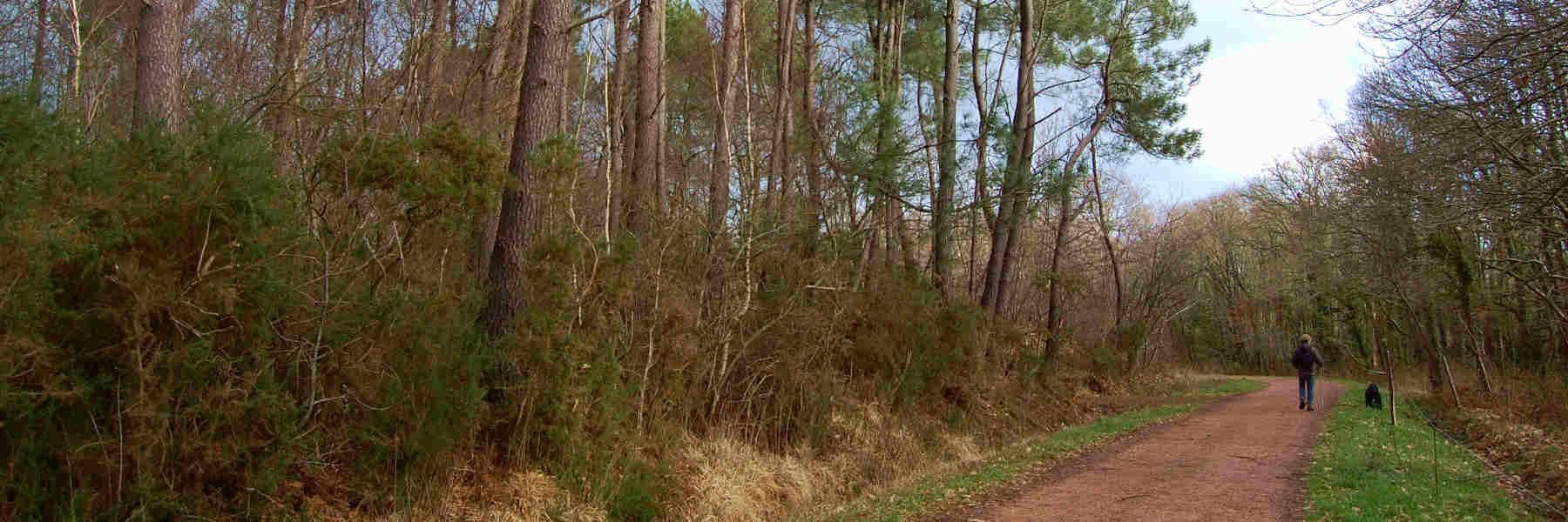 La randonnée pédestre à Herbignac