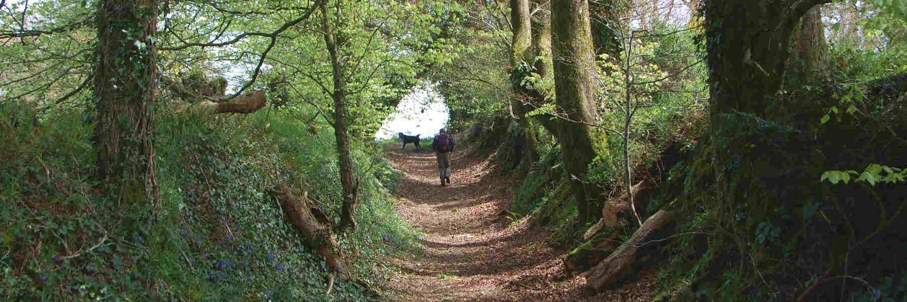 La randonnée pédestre à Mael-Pestivien