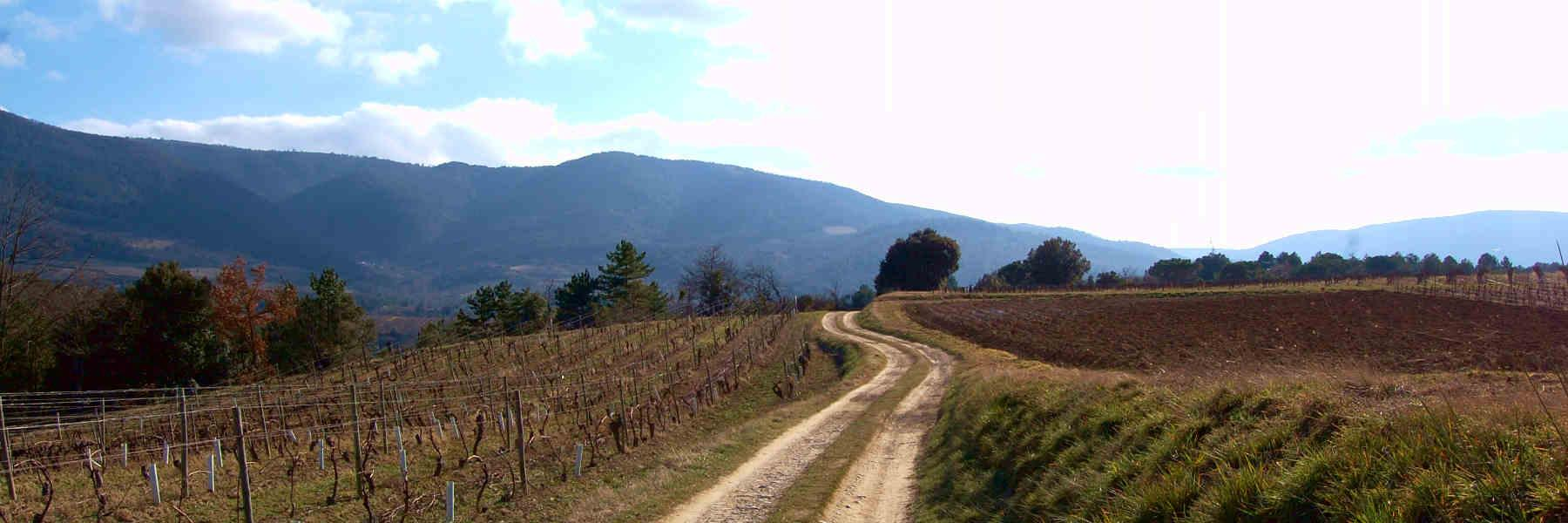 La randonnée pédestre de Saint-Polycarpe