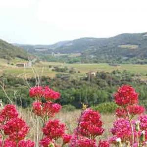 Randonnée à Roquebrun