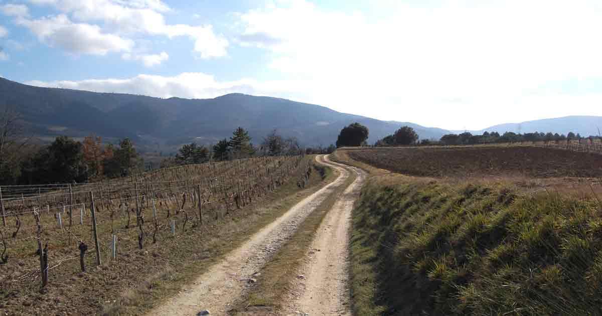 La randonnée de St-Polycarpe