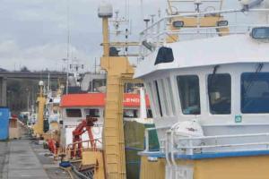 Visite pascal guide port concarneau 2