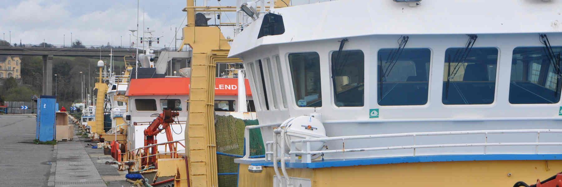Visite avec Pascal guide au port de Concarneau