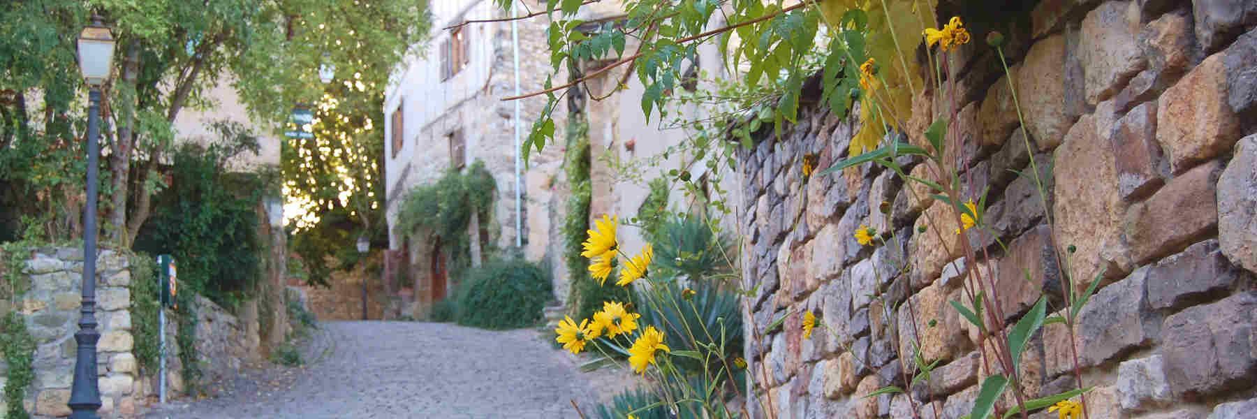 Visite du village de Cordes-sur-Ciel